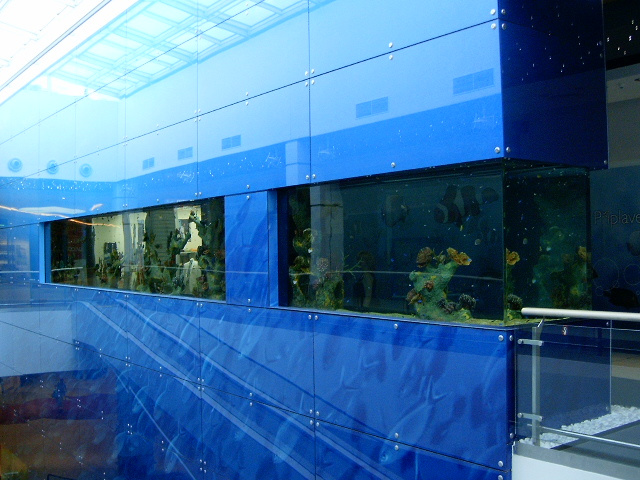 Aquarium, Nové Butovice Gallery